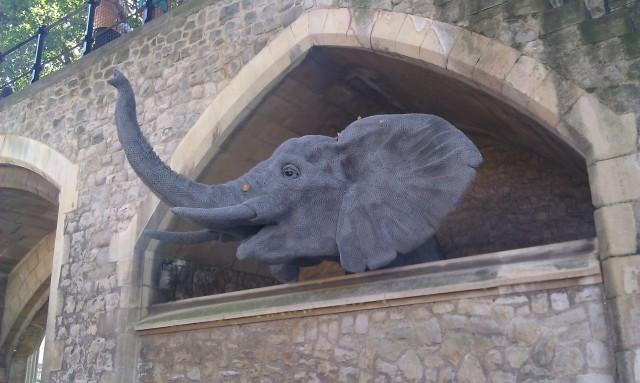 Sculpture d'éléphant en fil de fer créée par Kendra Haste [Fine wire sculpture of an elephant created by Kendra Haste]