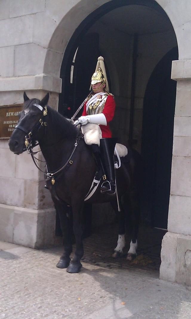 Cavalier de la garde [Horse Guard]