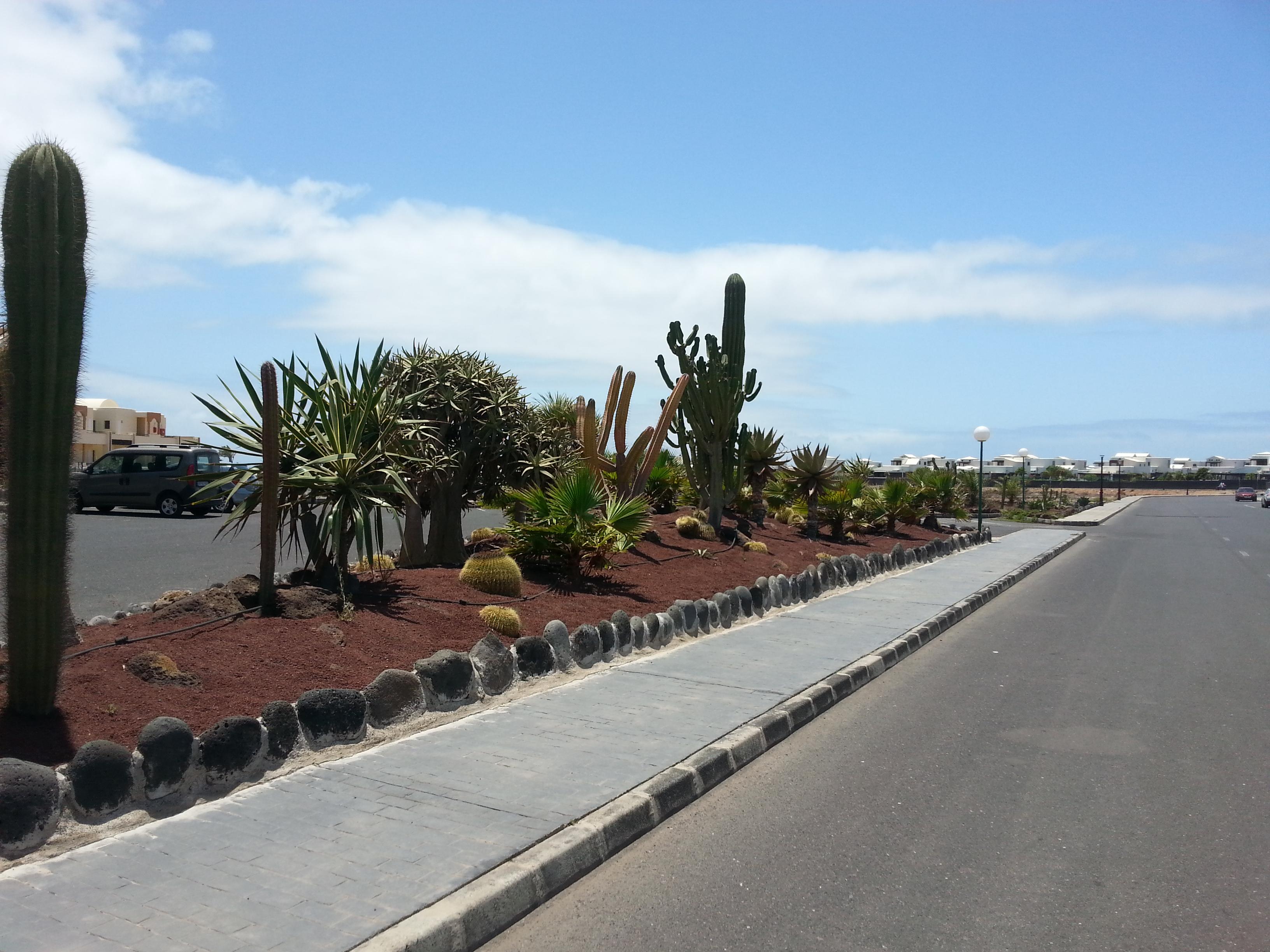 Sbh Hotel Monica Beach Holidaycheck